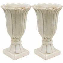 Decoratieve amfoor, beker voor opplant, beker tulp plantkan Ø12cm H25.5cm 2st