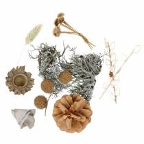 Herfstdecoratiemix als handwerkset Gedroogd Gebleekt 150g