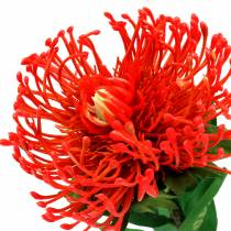 Protea Kunstmatig Rood 73cm