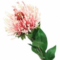 Protea Kunstmatig Roze 73cm