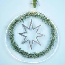 Ring met micro LED Ø38cm warm wit 125L wit Voor buiten en binnen