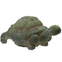 Tuinfiguur schildpad bemost 30cm x 18cm H15cm