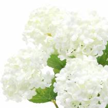 Sneeuwbal viburnumtak wit 42,5cm