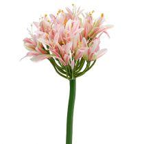 Zijden bloem agapanthus roze 80cm