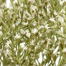 Lavendel, Statice Tatarica, lamsoor, limonium, droogbloemen 1 kg naturel