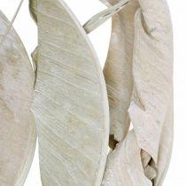 Strelitzia bladeren wit gewassen, gedroogd 45-80cm 10st