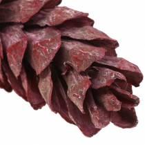 Strobus kegels naturel decoratie rood 15cm - 20cm 50st