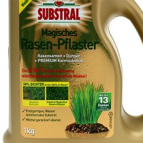 Substral Magical Lawn Paving 1000g NIEUW