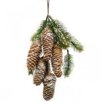 Dennengroen met kegels, winterdecoratie, dennentak om op te hangen, kegeldecoratie, besneeuwd L33cm