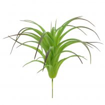 Deco tillandsie groen 16cm 4st
