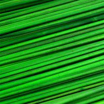 Tonkin Groen 70cm 150st.