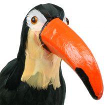 Decoratieve toekan met veren zwart L37cm