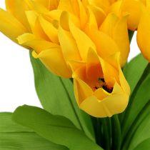 Tulpenstruik geel H30cm