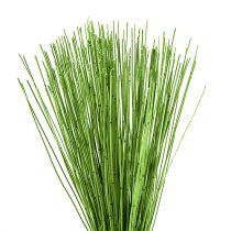Vlei Reed 400g lichtgroen