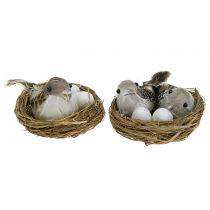 Vogelnest met eieren en vogel 6st