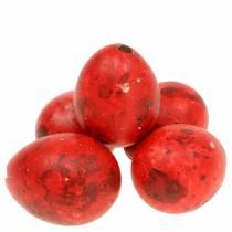 Kwarteleitjes roodgeblazen eieren 50st