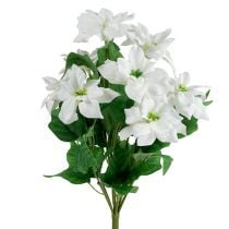 Poinsettia boeket wit L45cm