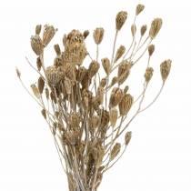 Bos van wilde bloemen, natuurlijk duizendblad, gewassen wit 30-60 cm 150 g