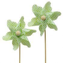 Molen Mini Groen-Wit Ø9cm 12st