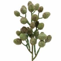 Pijnboomtak groen 33cm