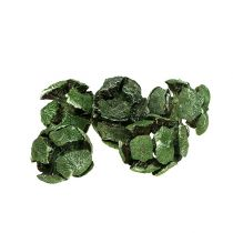 Cipres kegels 3 cm groen 500 g