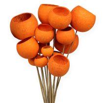 Bell Cup Mix op een stokje oranje 15st