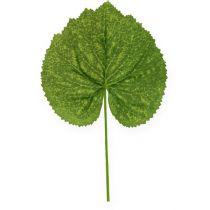 Decoratieve plantenbladeren Galax W10cm L22cm 24st