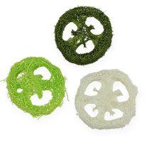 Loofah plakjes geassorteerd Groen, wit 5-7.5cm 24st