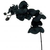 Orchidee voor decoratie zwart 54cm