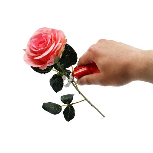 Rose doorn