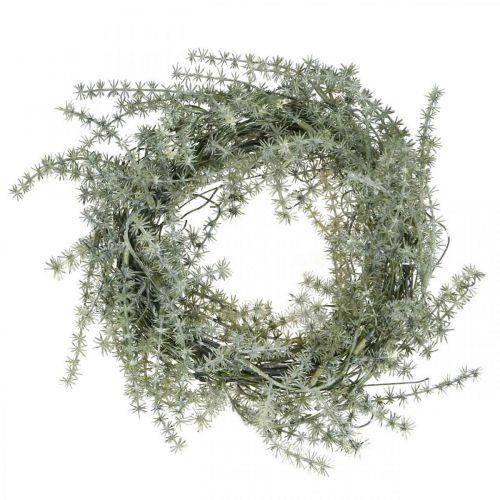 Aspergekrans wit, grijs Sierkrans asperge Ø20cm