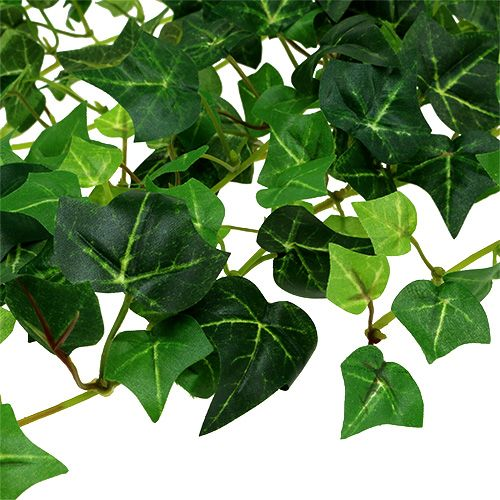 Klimoprank groen 70 cm