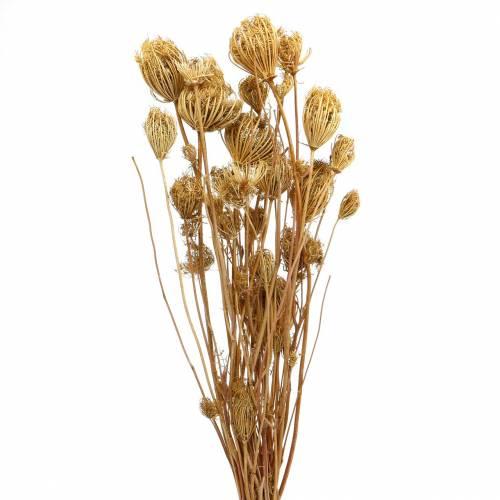 Gedroogde bloemen venkel natuurlijk 100g