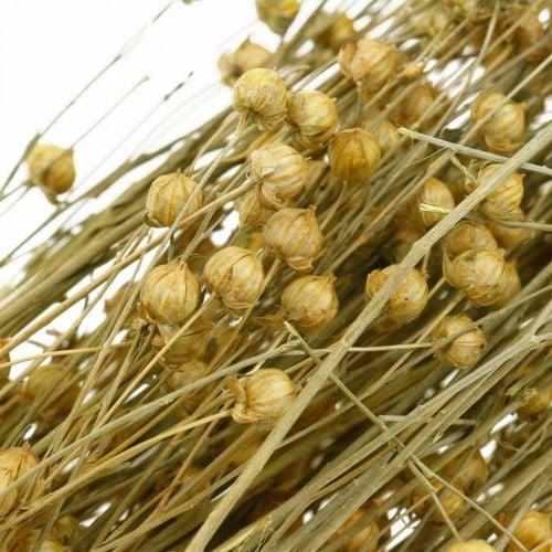Vlas natuurlijke grassen voor droge bloemisterij 100g