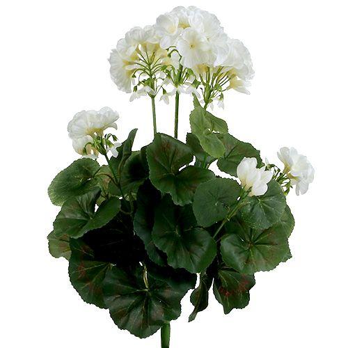 Geraniumstruik wit 36cm