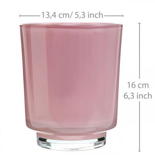 Glazen plantenbak, orchideeënpot, decoratieve vaas roze H16cm Ø13.4cm