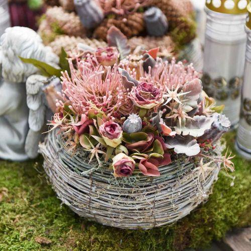 Herfstbloem speldenkussen Protea Rosa Leucospermum 73cm 3st
