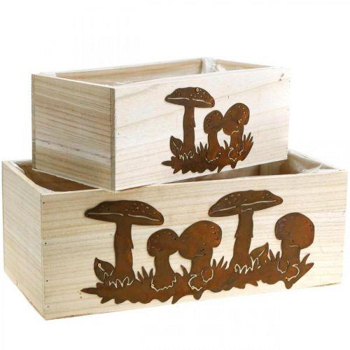 Plantenbak set, houten kisten met paddenstoelen, herfstdecoratie, RVS L40/30cm, set van 2
