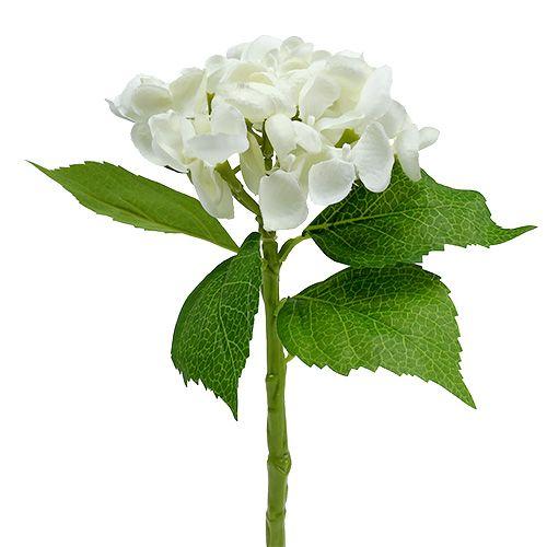 Hortensia 33cm wit 1 st