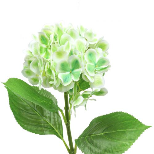 Hortensia kunstgroen, wit 68cm