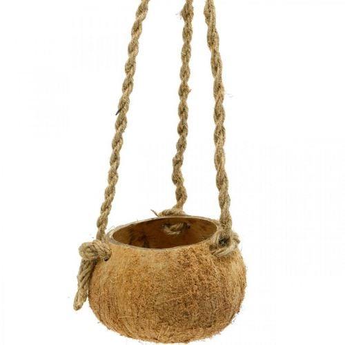 Kokoskom om op te hangen, plantenbak naturel, hangmand Ø8cm L55cm