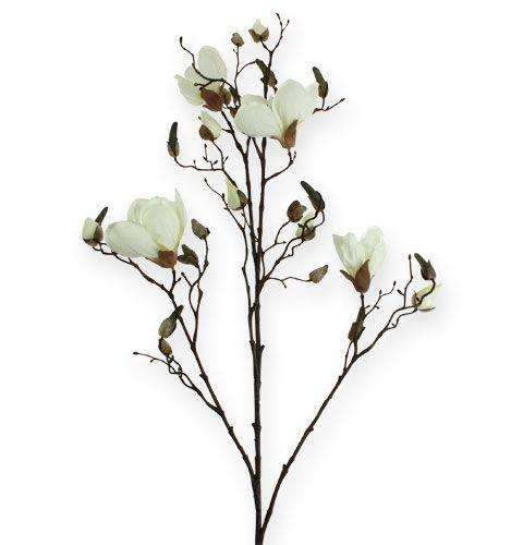 Magnoliatak wit 110cm