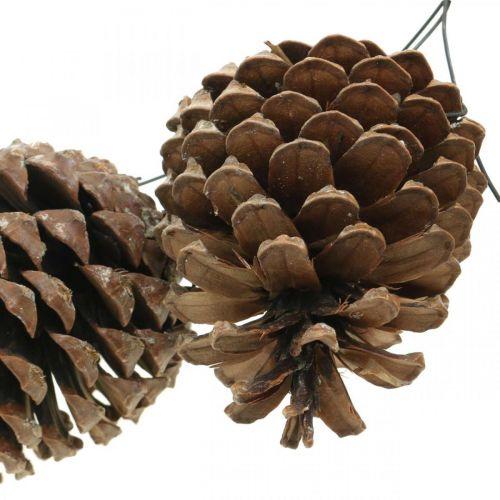 Maritieme kegels met draad, herdenkingsdagen, kerstversiering, natuurproduct H8–13cm Ø6–9cm 50st