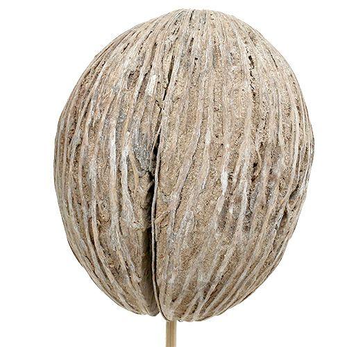 Mintolla bal op stok mix wit gewassen 6st
