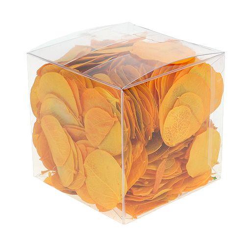 Moneta laat goudgeel 50g