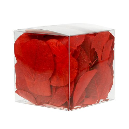 Moneta bladeren rood 50g