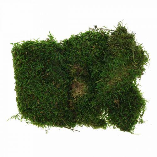 Decoratief mos voor knutselen groen, donkergroen 100g
