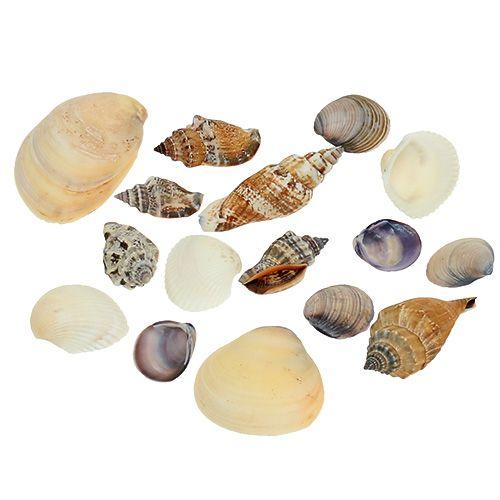 Shell mix naturel 400g