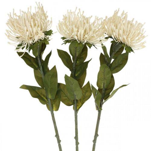 Speldenkussen kunstbloemen exotische leucospermum crème 73cm 3st