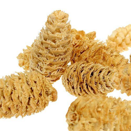 Omorika-kegels geraspt gebleekt 600 g